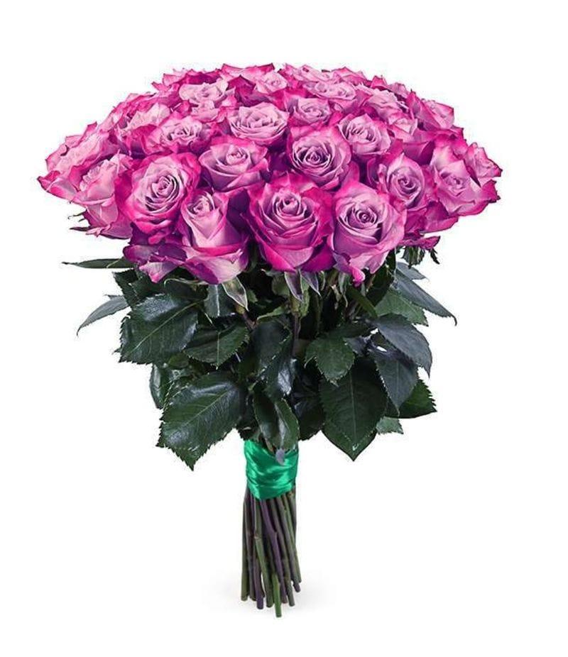 """Букет 25 роз """"Deep Purple""""(50см)"""