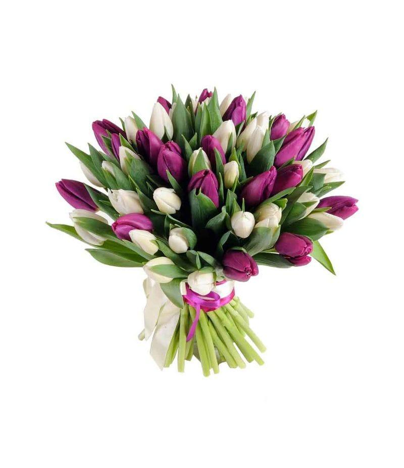 Букет 51 тюльпан (Белый и сиреневый)
