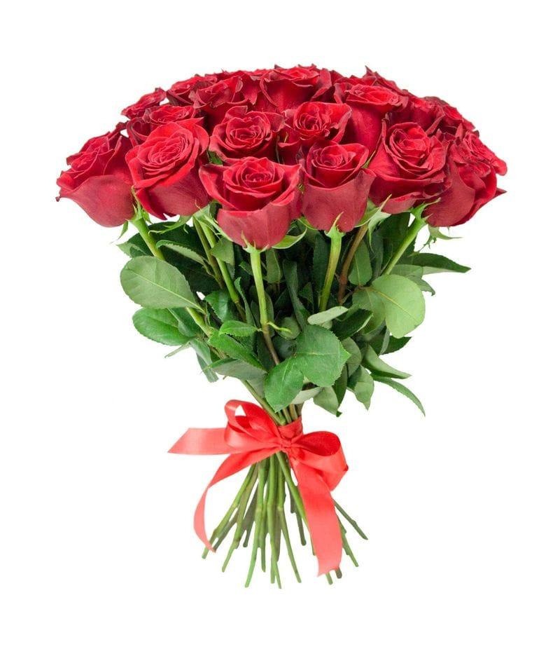 Букет 25 красных роз Эквадор(40см)
