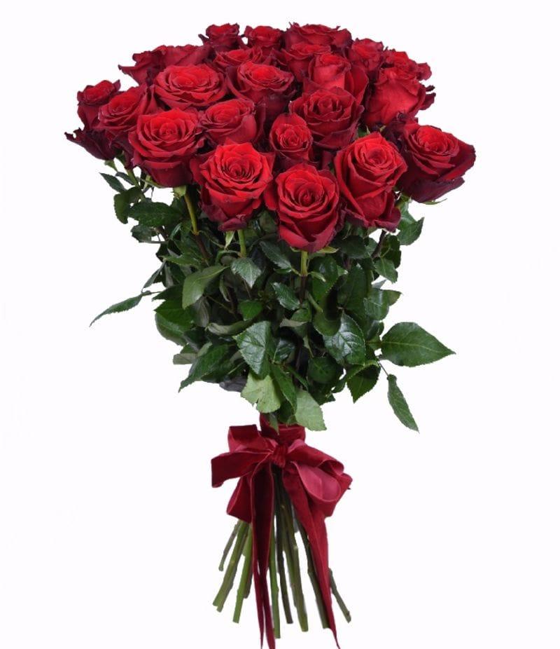 Букет 25 красных роз Эквадор(60см)