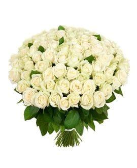 Букет 101 белая роза Эквадор (40см)