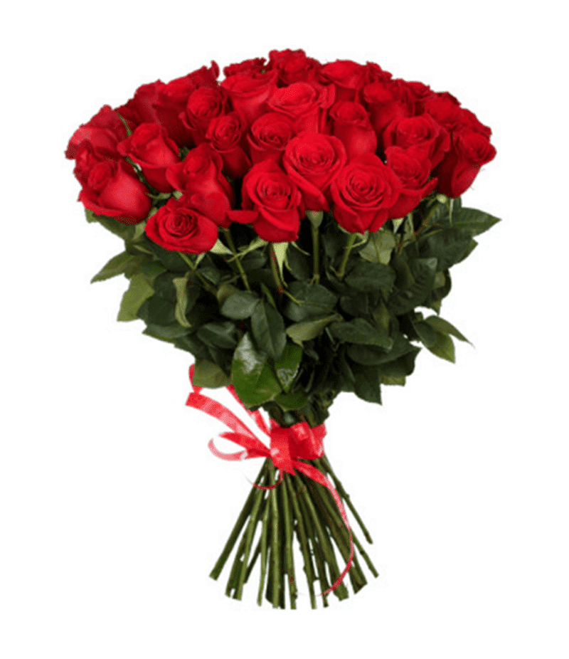Букет 25 красных роз Эквадор(70см)