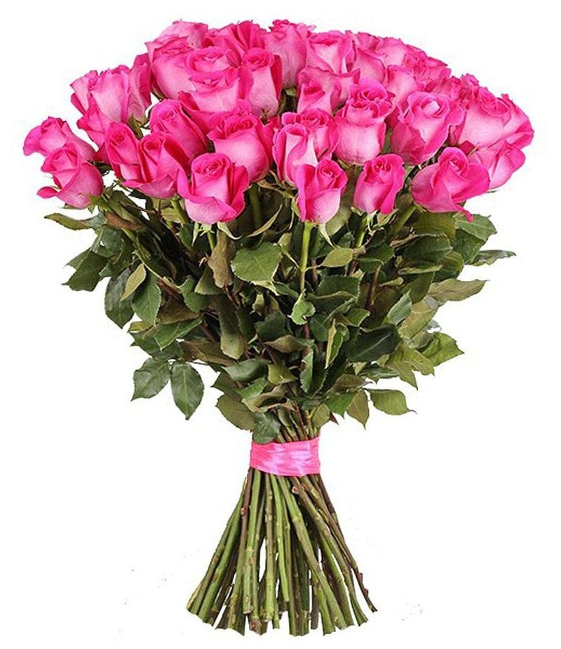 "Букет 25 роз ""Pink Floyd"" (60см)"
