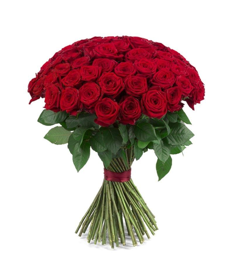 Букет 51 красная роза Эквадор (60см)
