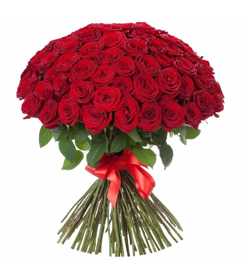 Букет 51 красная роза Эквадор (70см)