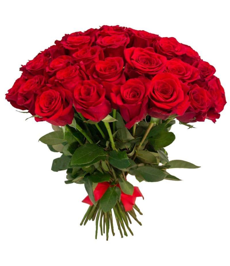 """Розы """"Фридом"""" 50см 25шт"""