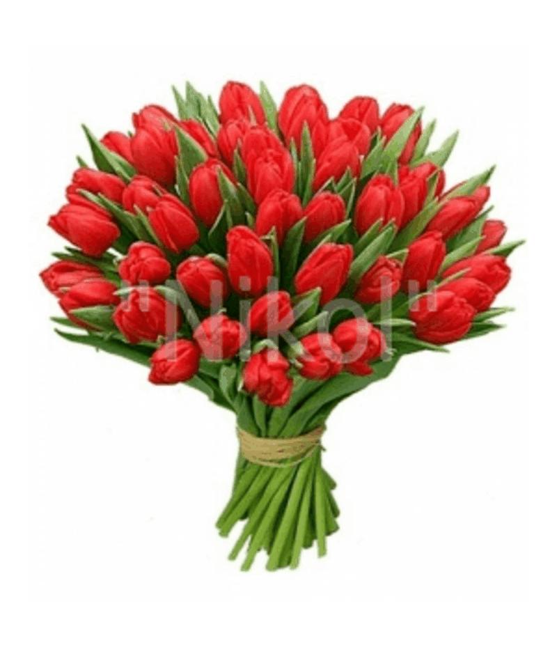 Тюльпаны поштучно  (выбрать цвет)