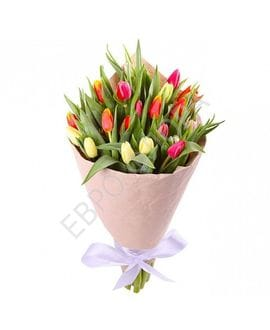 Букет 27  разноцветных Тюльпанов