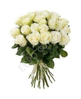 Букет 25 белых роз Эквадор(50см)