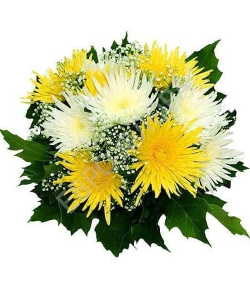 Букет из белой и желтой хризантемы