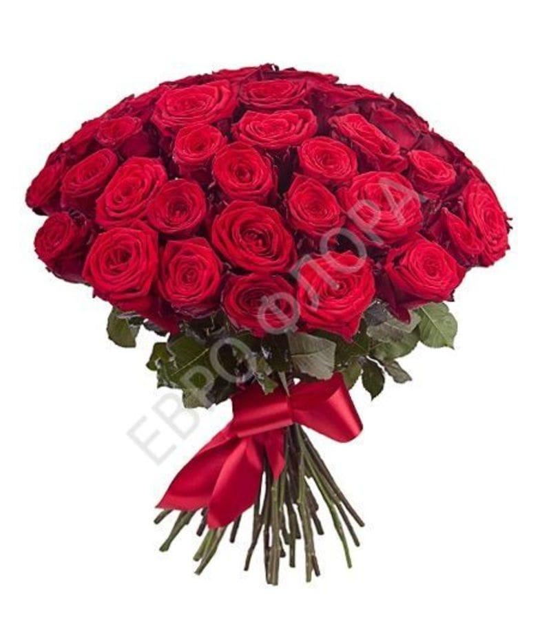 Букет 51 роза Эквадор 50см(выбрать цвет)