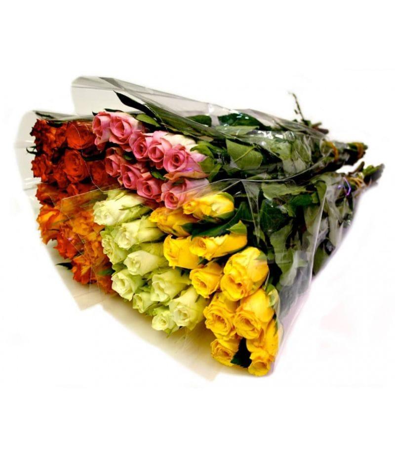 Роза Кения 35см -10шт
