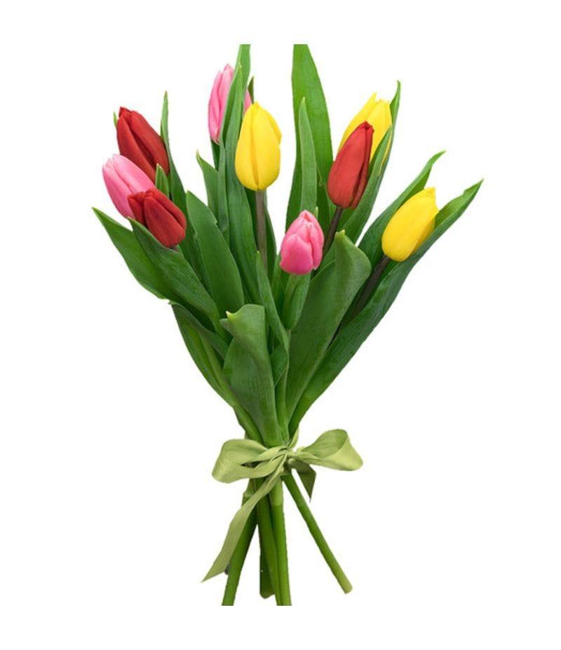 Акция 9 Тюльпанов