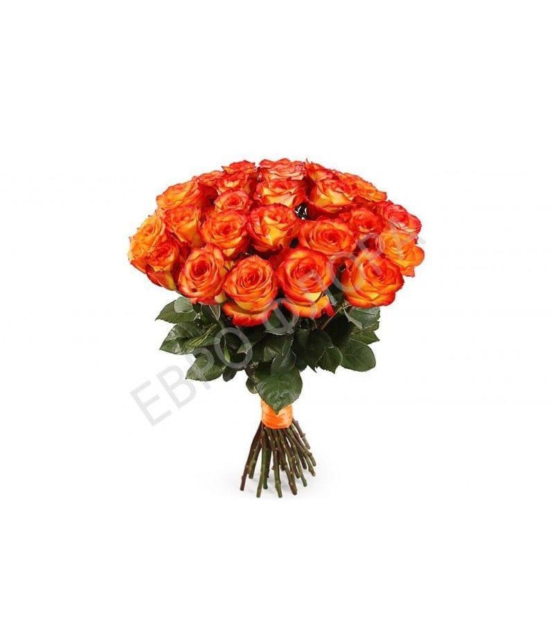 """Розы """"Хай Меджик"""" 40см  25шт"""