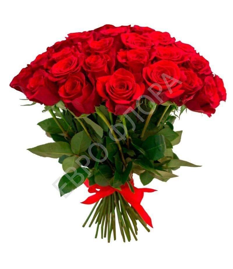 """Розы """"Фридом"""" 40см 25шт"""